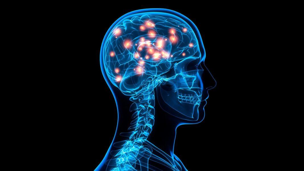 улучшаем работу мозга